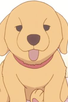 Gotou Roku