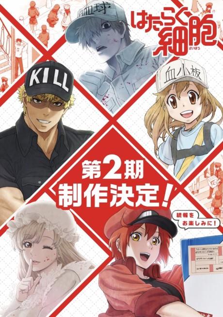 AniChart: To Be Announced Anime