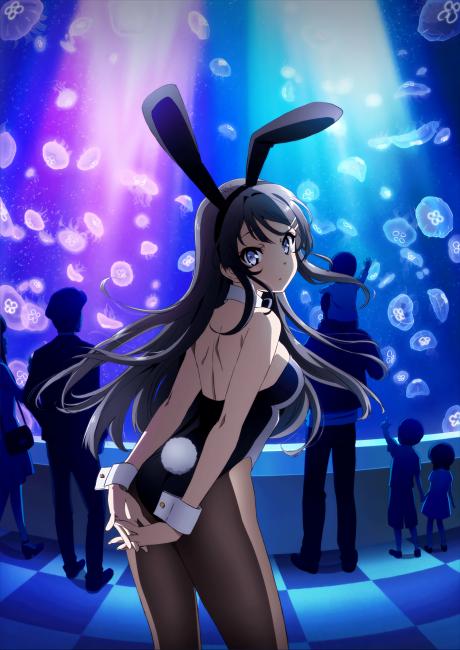 https://s4.anilist.co/file/anilistcdn/media/anime/cover/large/nx101291-hCsQJgSUwqKg.png