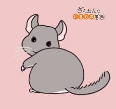 Zannen na Ikimono Jiten (2021)
